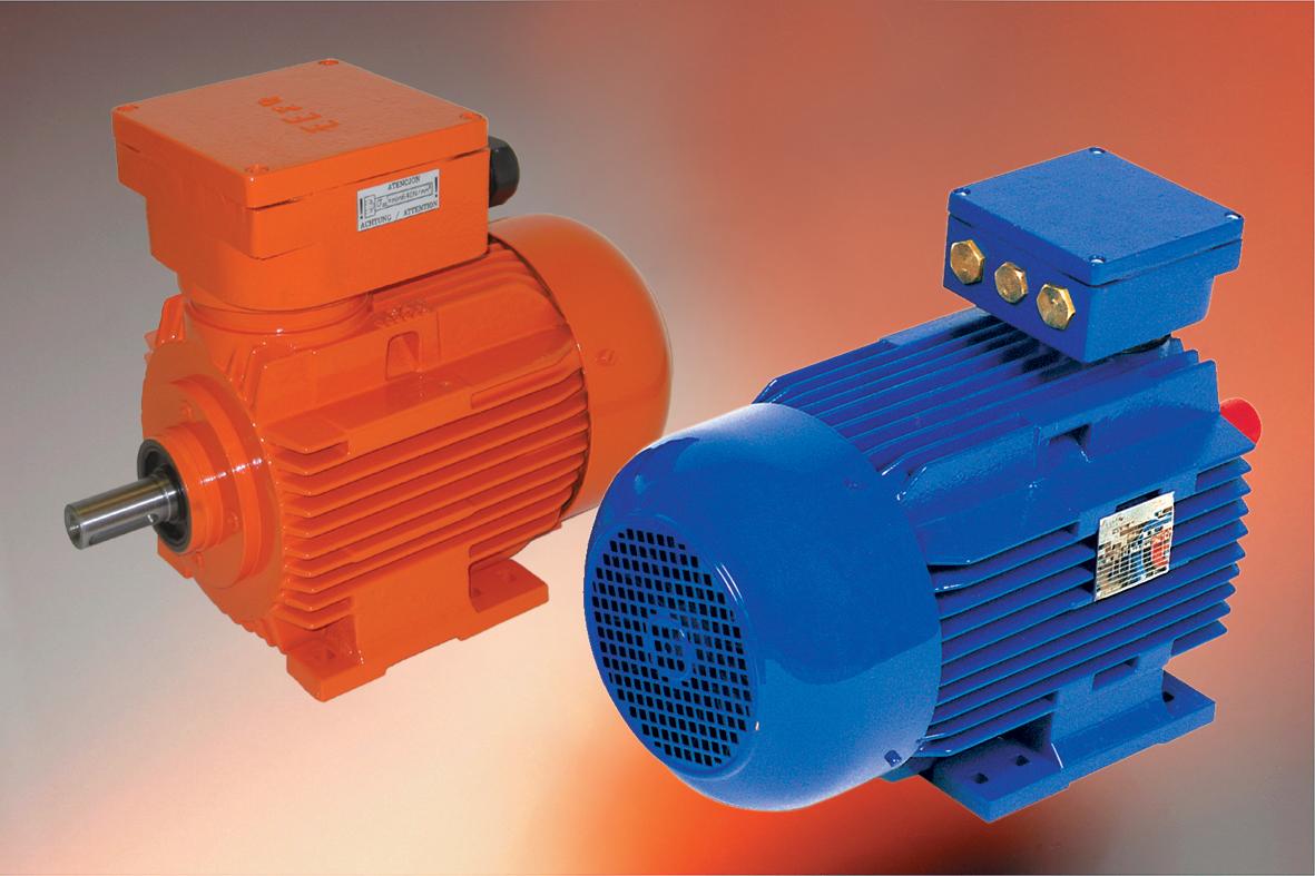 BARTEC Motoren