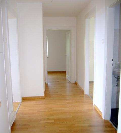 Wohnungsrenovierung / Sanierung