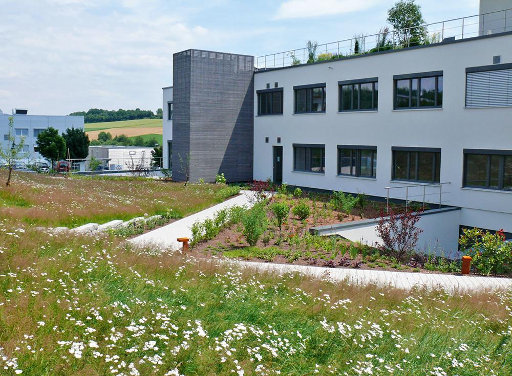 Tiefgaragenbegrünung und Dachgarten des ZinCo Firmensitzes