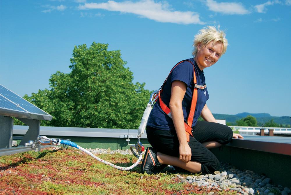 Gründach kombiniert mit Absturzsicherung und Solaranlage